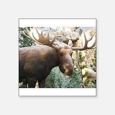 "Yukon Moose Square Sticker 3"" x 3"""
