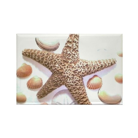 Sea Shells Rectangle Magnet