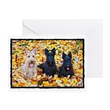 Autumn Scottish Terriers Greeting Card