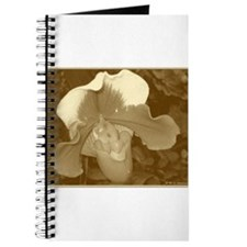 Orchid! Photo! Sepia print! Journal