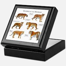Tigers of the World Keepsake Box