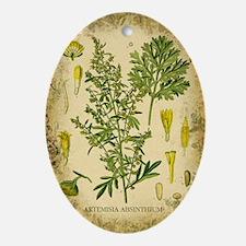 Absinthe Botanical Illustration Ornament (Oval)