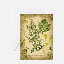 Absinthe Botanical Illustration Greeting Card