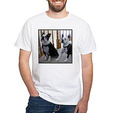 BostonTerrier dogs Shirt