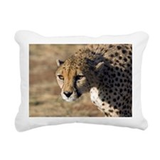 Cheetah - Pillow