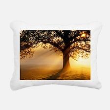 Oak tree at sunrise - Pillow