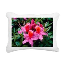 Rhododendron 'Fanny' - Pillow