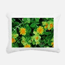Salad Bush (Didelta spinosa) - Pillow