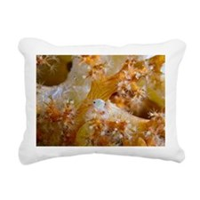 Soft coral crab - Pillow