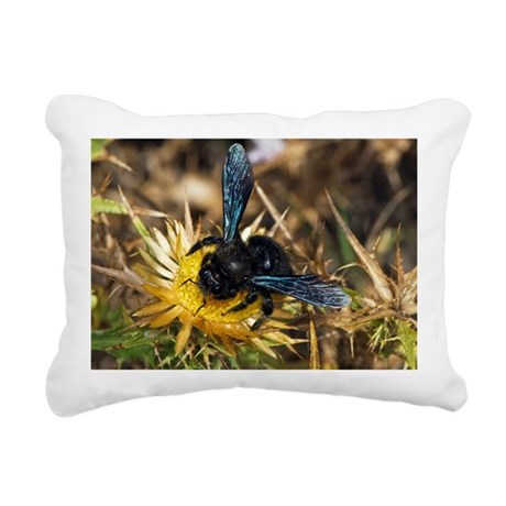 Violet Carpenter Bee - Pillow