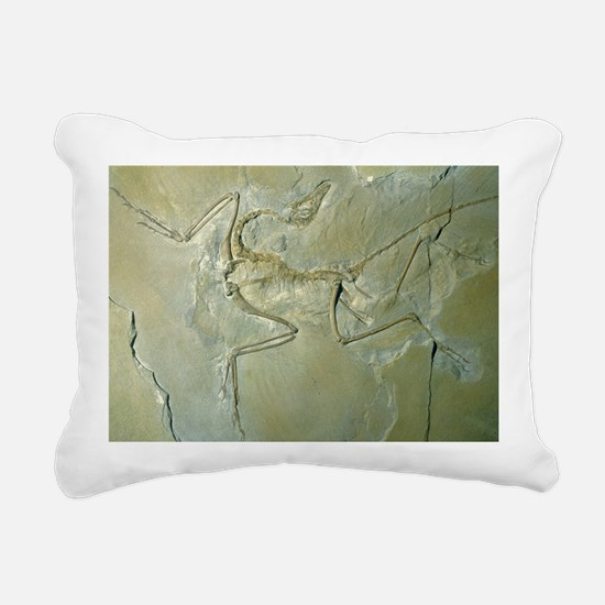 Archaeopteryx fossil - Pillow