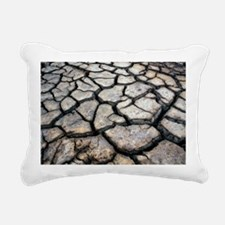 Cracked earth - Pillow