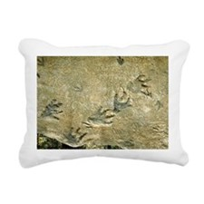 Dinosaur footprint fossils - Pillow