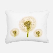 Dandelion seed heads - Pillow