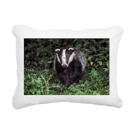 European badger - Pillow