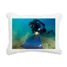 Invasive seaweed control - Pillow