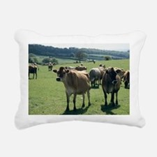 Jersey cows - Pillow