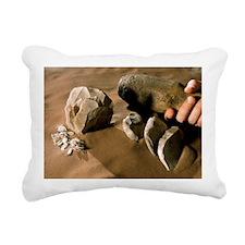 Levallois stone tools - Pillow