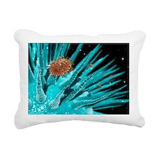 Flu viruses - Pillow