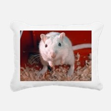 Laboratory gerbil - Pillow