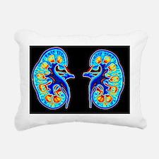 Human kidneys - Pillow
