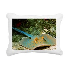 Blue-spotted fantail ray - Pillow
