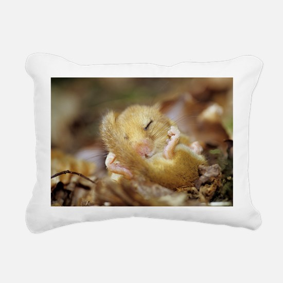 Dormouse - Pillow