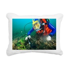 Finding evidence underwater - Pillow