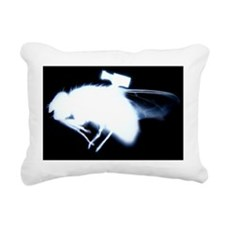 Fly with video camera - Pillow