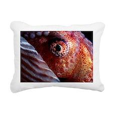 Greater argonaut eye - Pillow