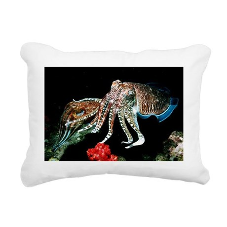 Pharaoh cuttlefish - Pillow
