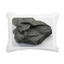 Sample of shale - Pillow