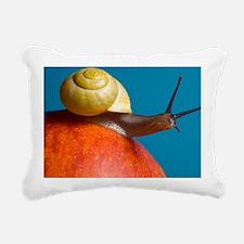 Snail - Pillow