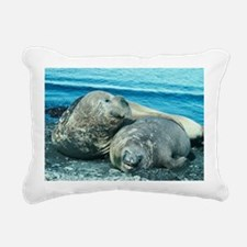 Southern elephant seals - Pillow