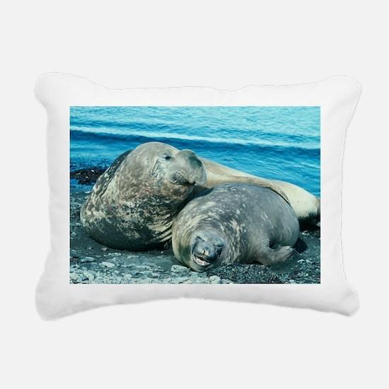 Southern elephant seals - Pillow
