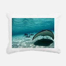Southern stingray - Pillow