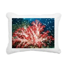 Soft coral - Pillow