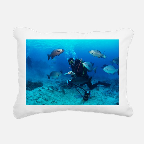 Sparidae fish and scuba diver - Pillow