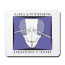 Gigantiops destructor Mousepad