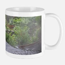 Costa Rica Hot Springs Mug