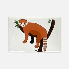 Red Panda Rectangle Magnet