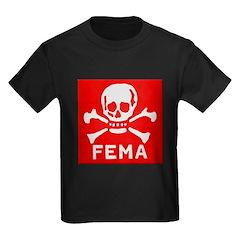FEMA T