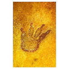 Fossilised dinosaur footprint Poster