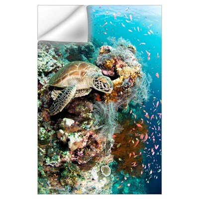 Green turtle Wall Decal