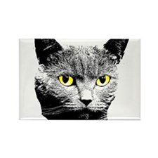 Cat with Yellow Eyes Rectangle Magnet