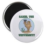 Camel Toe University Magnet
