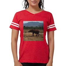pwwo_shirt.png Can Insulator