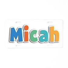 Micah Spring11B Aluminum License Plate