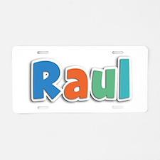 Raul Spring11B Aluminum License Plate