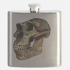 Australopithecus afarensis, artwork - Flask